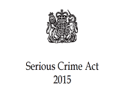 The Serious Crime Act 2015 image